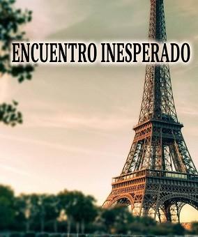 Leer Encuentro Inesperado - Susett F. Onarres (Online)