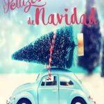 Leer Pellizcos de Navidad – Lara Rivendel & Dona Ter (Online)