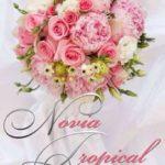 Leer Novia Tropical – Vicky Loebel (Online)