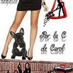 Leer Por La C De Carol – Mary Shepherd (Online)