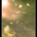 Leer Aire entre las manos – Marta Márquez (Online)